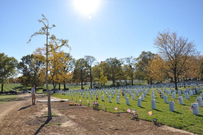 Arlington National Cemetery_fresh graves